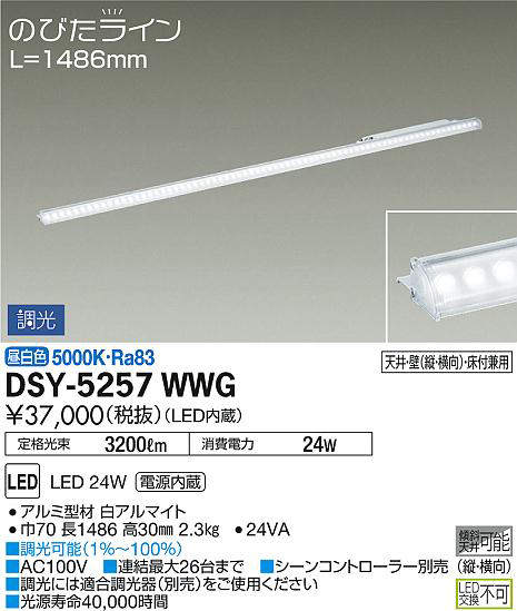 dsy5257wwg